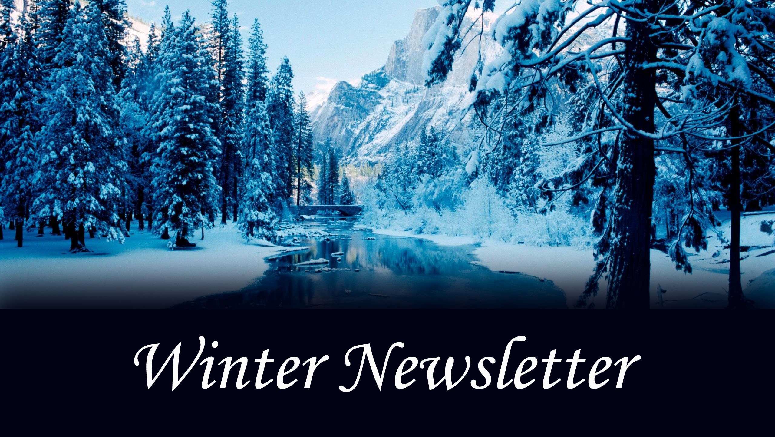 Winter Newsletter 2020 Image