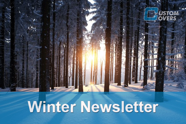 Winter-Newsletter-Icon