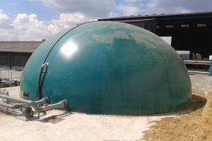 AED Biogas dome