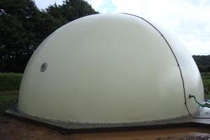 Twin skin biogas storage dome